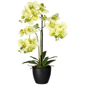 Orchidee real-touch, 65 cm, grün