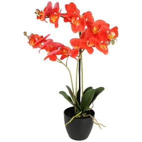 Orchidee real-touch, 65 cm, koralle