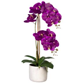 Orchidee im Zementtopf lila 60cm real-touch