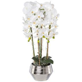 XXL-Orchidee im Silbertopf weiß, 75 cm