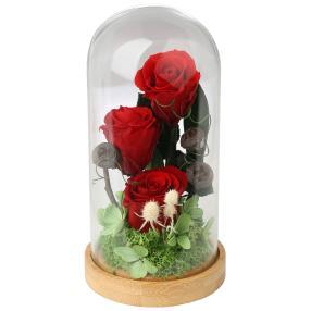 Glaskuppel mit Rosen, rot