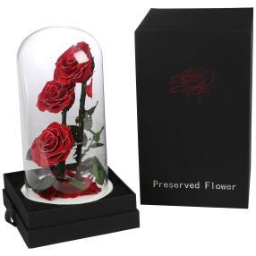 Glaskuppel Rosen rot-silber