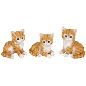 Zauberwelt Katze TOM 3er-Set