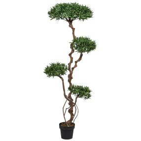 Eibenbaum 130 cm, Naturstamm
