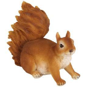 Zauberwelt Eichhörnchen