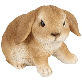 Zauberwelt Kaninchen