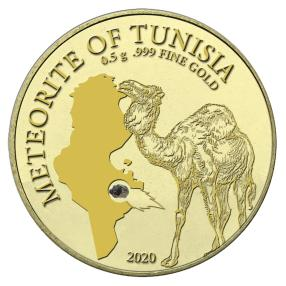 Golden Meteorite Tunesien