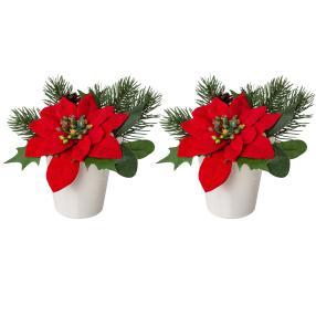 Weihnachtsstern rot 2er Set, 13 cm