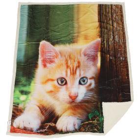Sherpa-Decke Katze liegend