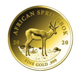 GK 2020 African Springbok