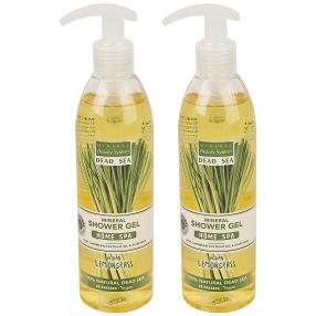 MINERAL Beauty System Duschgel Lemongrass 2x300 ml