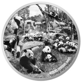 1 kg Münze Big Panda Family, vergoldet