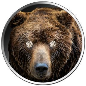 Münze Diamantauge Bär