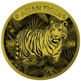 1 kg Asiatischer Tiger