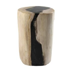 Darimana Fossiler Holz Stamm ca. 3 kg poliert