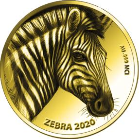 Goldklassiker Zebra
