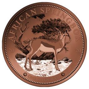 1 kg Springbok 2020 RG