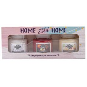 Candle Brothers Duftkerzen 'Home Sweet Home' 3er
