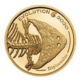 Gold Klassiker Diplocaulus 2020