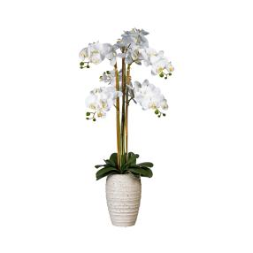XL-Orchidee weiß in Vase 90cm