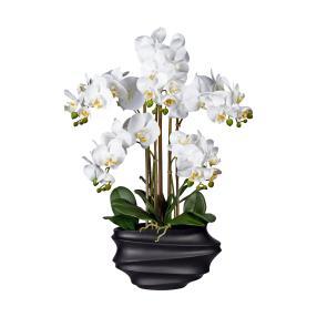 XXL-Orchidee weiß 75cm im Topf schwarz