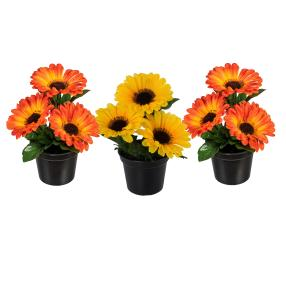 Gerbera orange-gelb 3er-Set