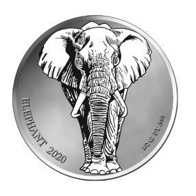 Platinklassiker Elefant 2020