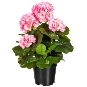 Geranienbusch rosa 33cm