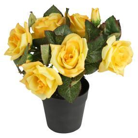 Rosenbusch gelb, ca. 24 cm