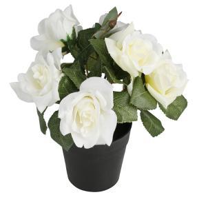 Rosenbusch creme-weiß, ca. 24 cm