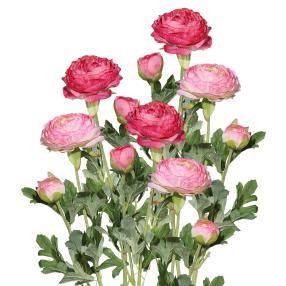 Ranunkel rosa 40cm 6er-Set