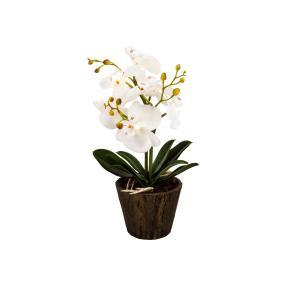 Leuchtende Orchidee weiß, mit LEDs