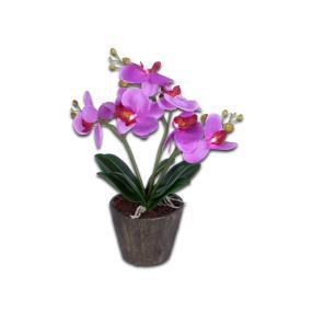 Leuchtende Orchidee pink