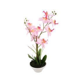 Dekotraum Orchidee, rosa/pink/gelb
