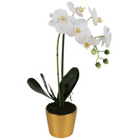 Orchidee im goldenen Übertopf, 47 cm