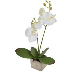 Orchidee im Zementtopf, weiß, 7,5 x 22 x 38 cm