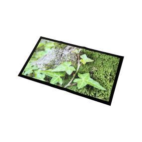 Fußmatte Efeu 70 x 40 cm