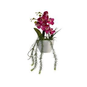 Wandorchidee inkl. Topf, ca. 28 x 15 cm