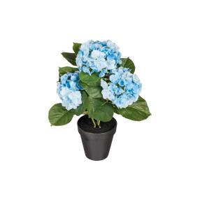 Hortensie blau, ca. 40 cm
