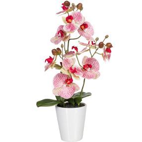Orchidee im Keramiktopf rosé, 3D-Print, 45 cm