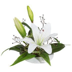 Lilienarrangement weiß, Keramikschale, 28 cm