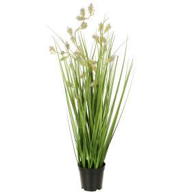 Grasbusch mit Blüten, 70 cm
