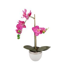 Orchidee, pink, im Keramiktopf, 8 Blüten