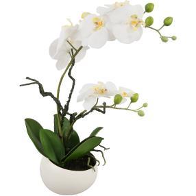 Orchidee in der Dekokeramikschale, weiß, 42cm
