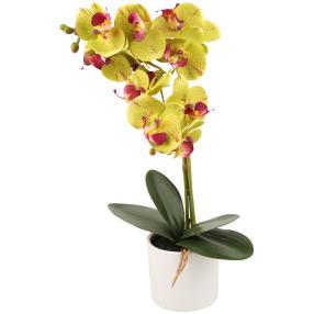 Orchidee im Keramiktopf, gelb, 45cm