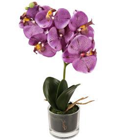 Orchidee im Glas, lila, 40 cm