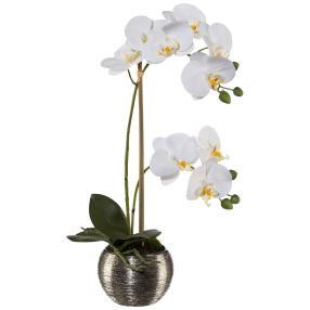 Orchidee weiß, inkl. Silbertopf, ca. 42 cm