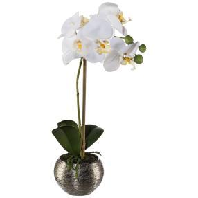 Orchidee weiß, inkl. Silbertopf, ca. 33 cm