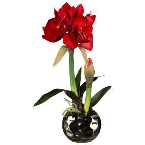 Amaryllis rot, im Silbertopf, ca. 45 cm