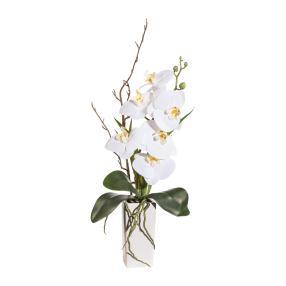 Orchidee in der Keramikvase, weiß, 50 cm